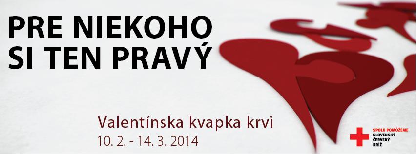 VKK 2014 media banner.png